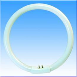 Úsporná kruhová záøivka OPPLE YH22W/6500, denní bílé svìtlo, G10q, 00300