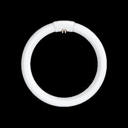 Kruhová záøivka LC 32W T9/865 G10q NBB, 116121000