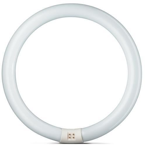 Záøivka kruhová Philips MASTER TL-E 32W/830, G10q, 3000K, 928026383070 - zvìtšit obrázek