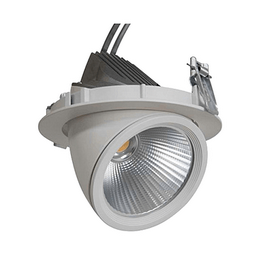 GIMBAL LED COB DOWNLIGHT 20W/940 24° CRI90