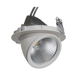 GIMBAL LED COB DOWNLIGHT 30W/940 24° CRI90
