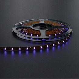 LED pásek 12V 60LED/m SMD5050 FIALOVÁ IP33 14,4W/m