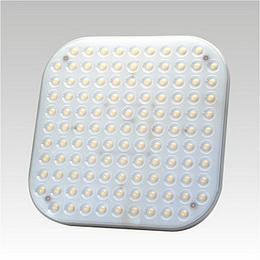 2D LED 230-240V 25W 4000K GR10
