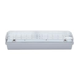 CARLA 30 LED 230-240V 1h TP IP65