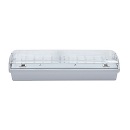 CARLA 30 LED 230-240V 6h DP IP65