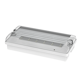 FLAT 12LED Em3h DP/TP IP65 clear   piktogram